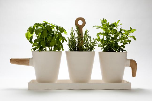 Nueve Kitchen Herb