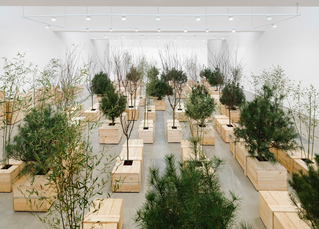 Yoko Ono: Golden Ladders at Faurschou Foundation