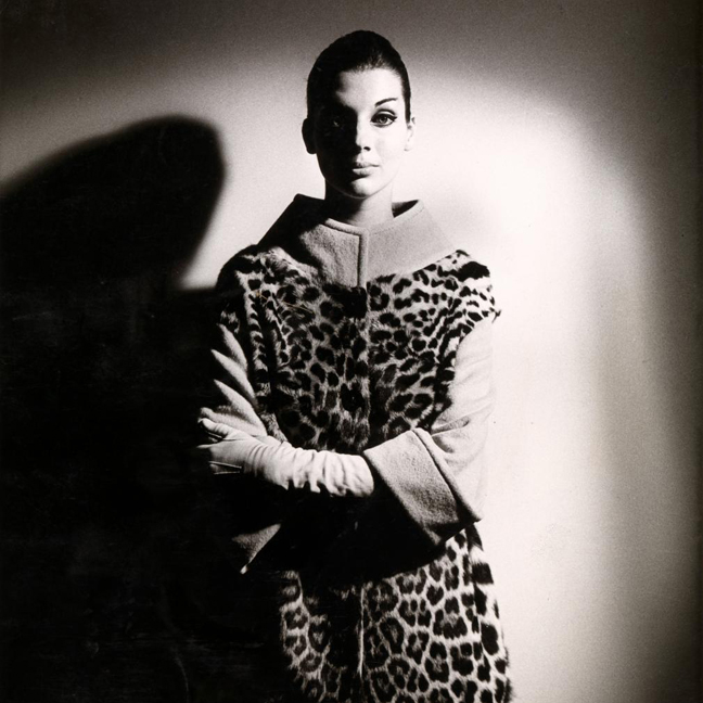 Henry Talbot -1960s Fashion Photographer at NGV
