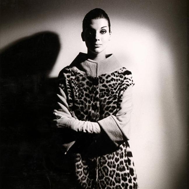 Henry Talbot -1960s Fashion Photographer at NGV