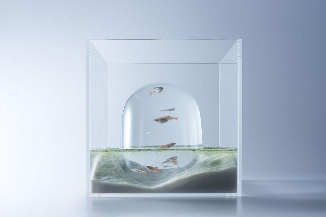 Waterscape by Haruka Misawa