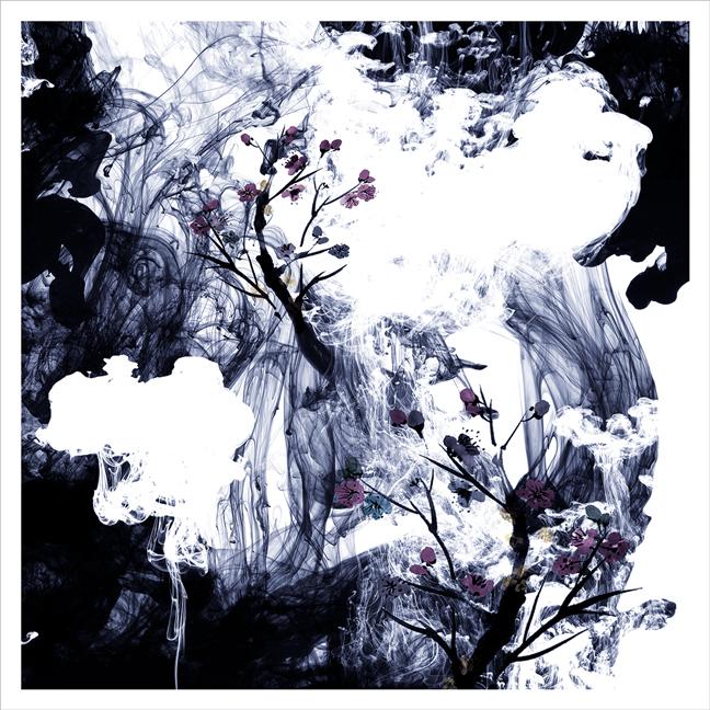 floral-ink-Robin_Greene