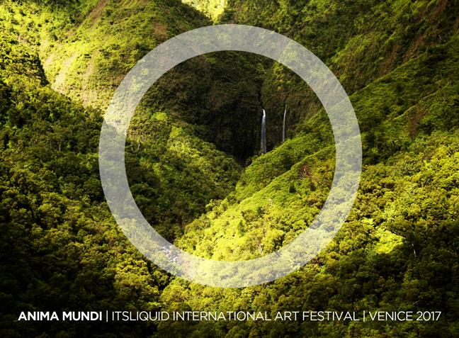 OPENING: ANIMA MUNDI FESTIVAL - VISIONS
