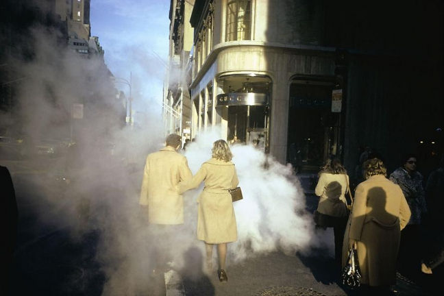 Joel Meyerowitz . Why Color?