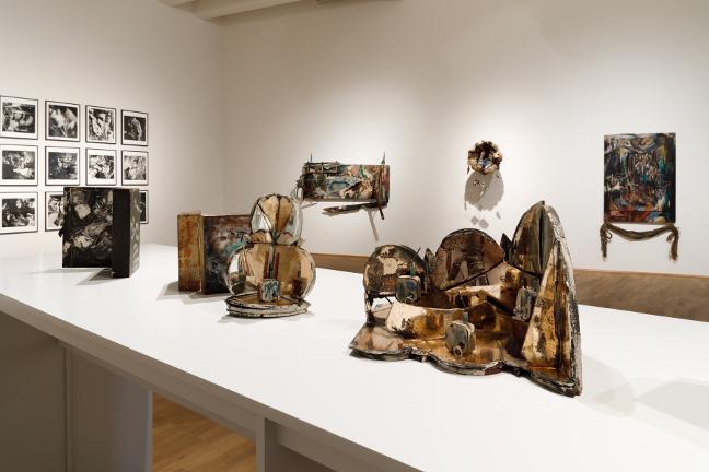 Carolee Schneemann: Kinetic Painting