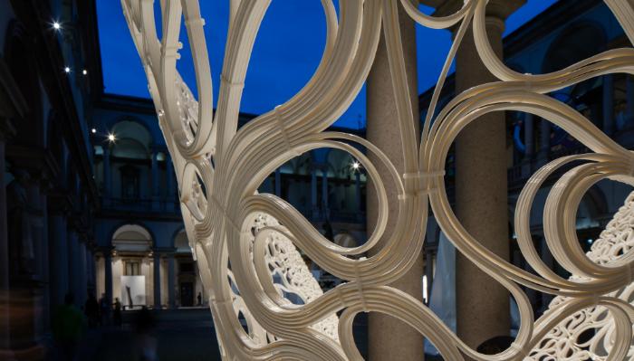Thallus Installation