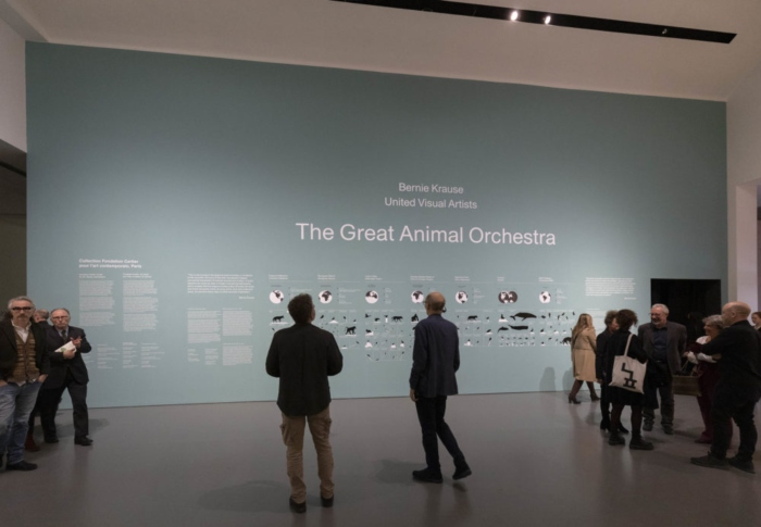 The Great Animal Orchestra - Fondation Cartier
