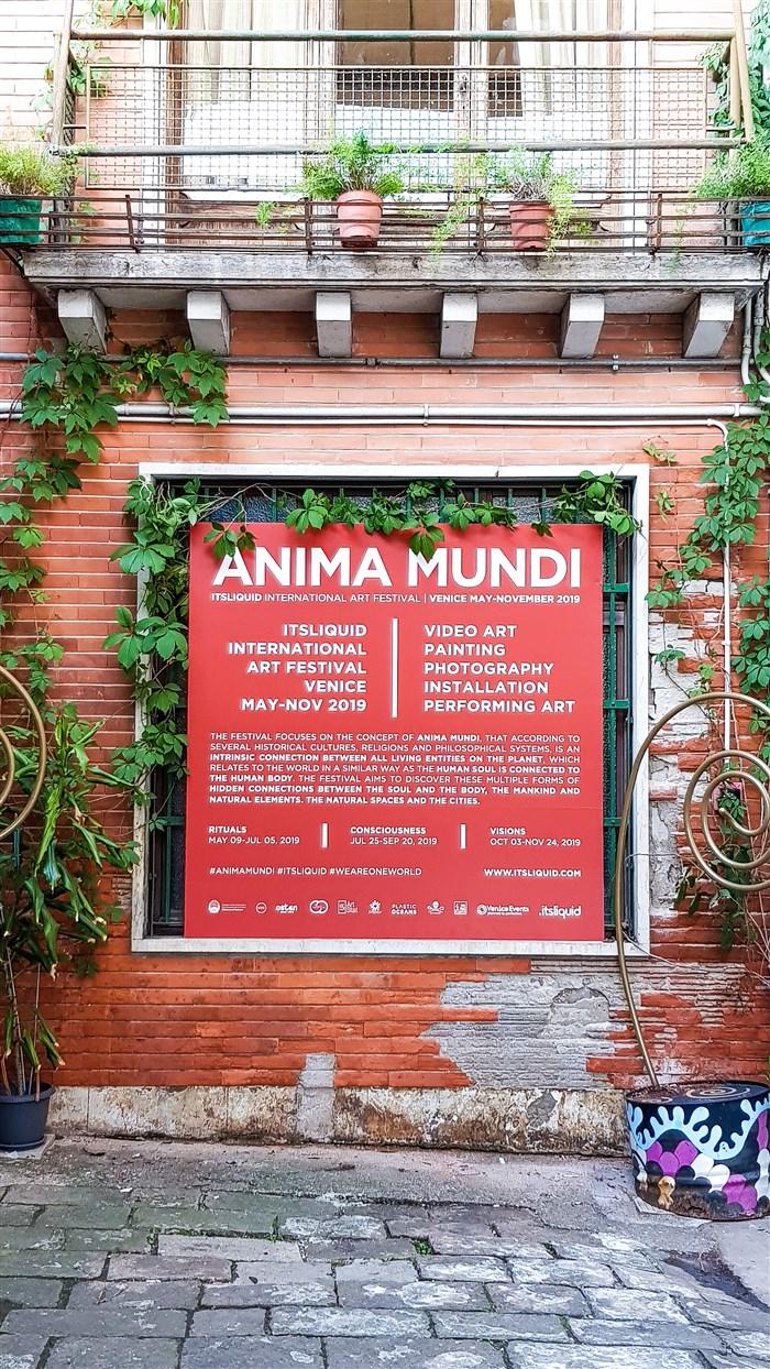 Feedback release: Anima Mundi Festival - Rituals 2019