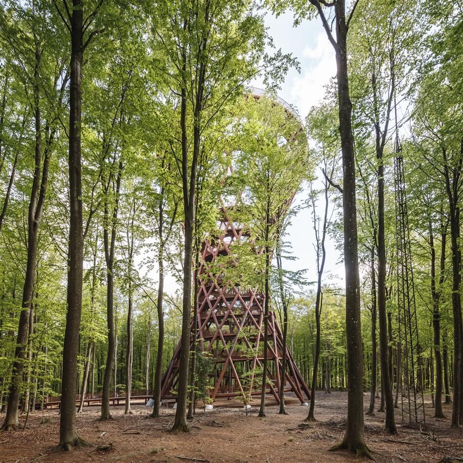 Camp Adventure Park 006