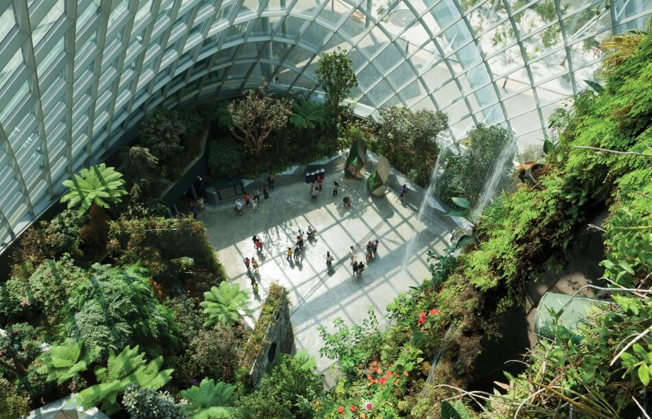 Cooled Conservatories, Gardens by the Bay