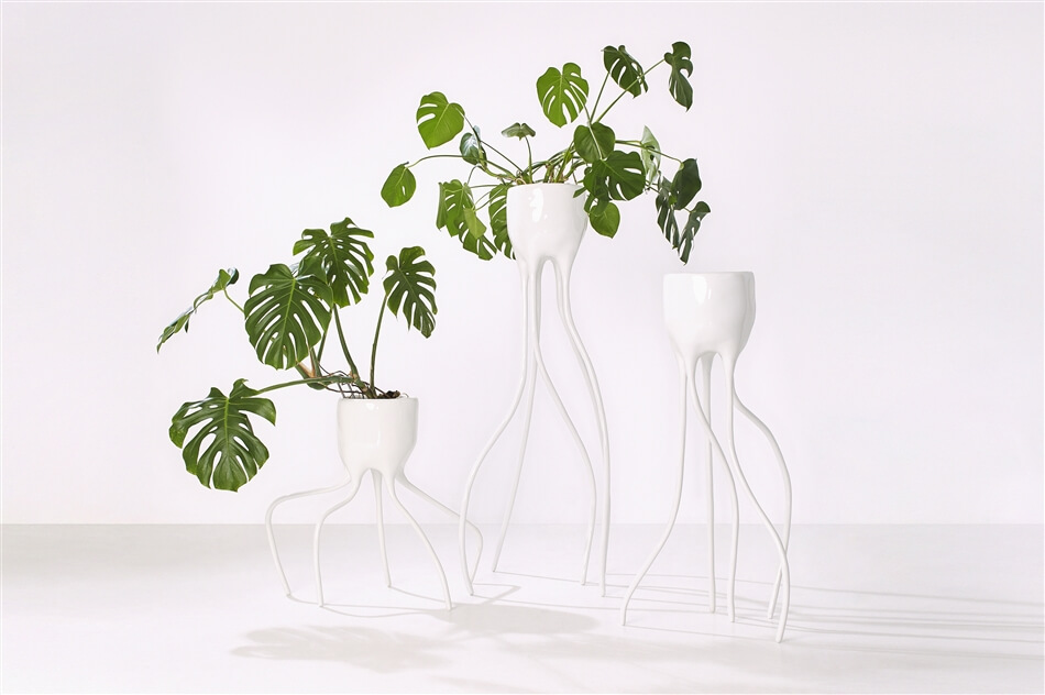 Plant Fever. Towards a phyto-centred design