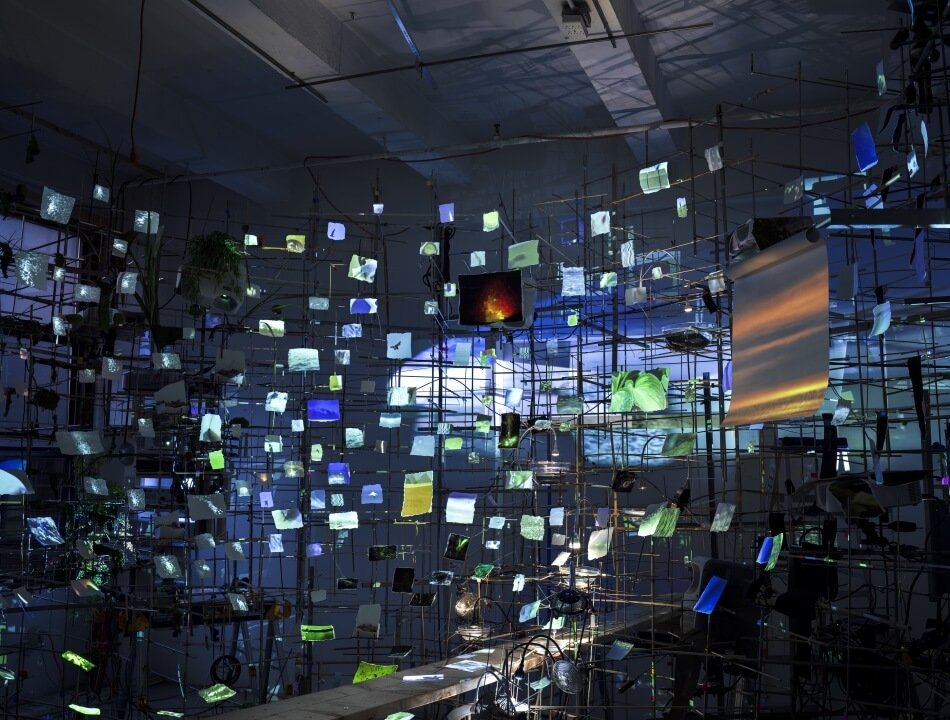 sarah sze night into day